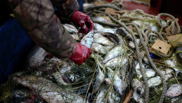 запрет на рыбалку 2018
